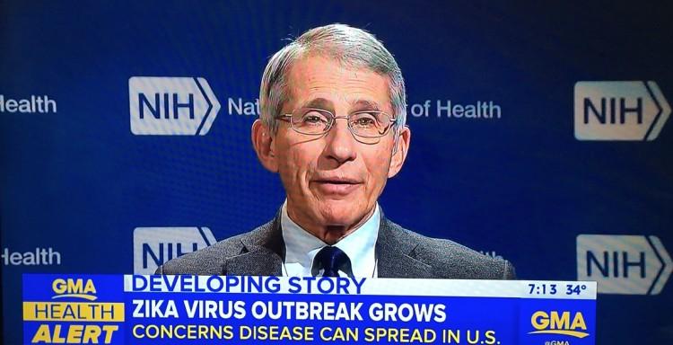 """O médico Anthony Fauci foi o entrevistado do """"Good Morning America"""" nesta quinta, 28. (Foto: Reprodução)"""