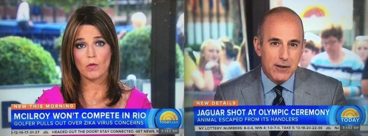 """Âncoras do programa """"Today"""" apresentam reportagens sobre jogador de golfe que não vai a Rio-2016 por medo do vírus zika e morte da onça Juma em Manaus. (Foto: Reprodução)"""