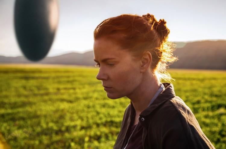 """Mostra""""The Contenders"""" começa com a exibição de """"A Chegada"""", ficção-científica estrelada por Amy Adams. (Foto: Divulgação)"""
